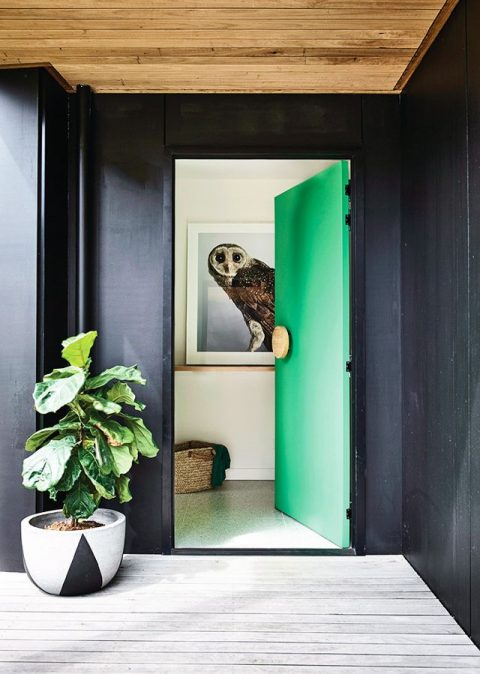 Trends - coloured doors